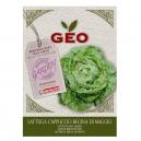 Lettuce (green) May Queen (4.5gr)