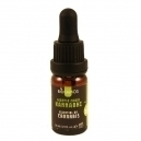 Cannabis Essential Oil (10ml)