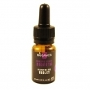 Violet Essential Oil (10ml)