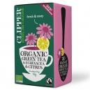 Πράσινο Τσάι με Eχινάτσια (40γρ)