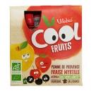 Επιδόρπιο Φρούτων Μήλο, Φράουλα, Μύρτιλλο & Ασερόλα (4x90γρ) ή (1x90γρ)