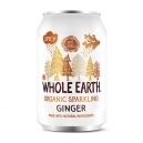 Sparkling Ginger drink (330ml)