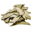Eucalyptus Leaves (20gr)