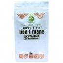 Mushroom Extract Lion's Main (8:1) -30% polysaccharides (50gr)