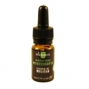Melissa Essential Oil (10ml)